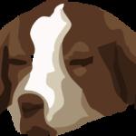 Znudzony pies
