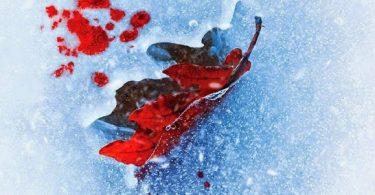Smilla w labiryncie śniegu